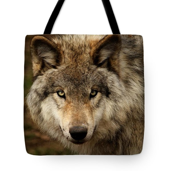 Undivided Attention Tote Bag