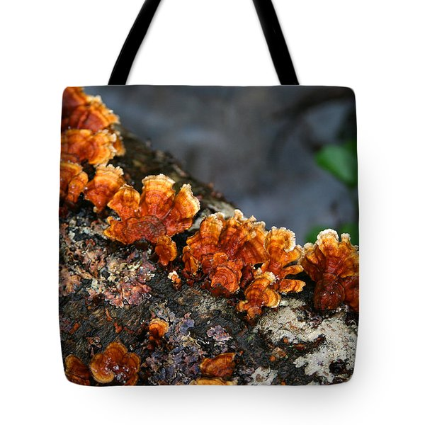 Unexpected Brightness Tote Bag by Andrei Shliakhau