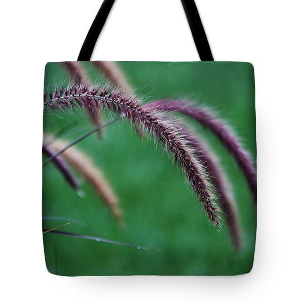 Tote Bag featuring the photograph Unexpected Sharpness by Vadim Levin