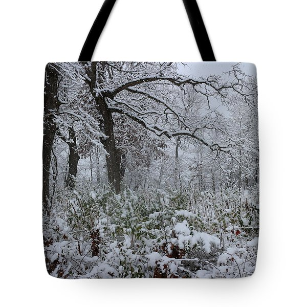 Unexpected Snow Tote Bag
