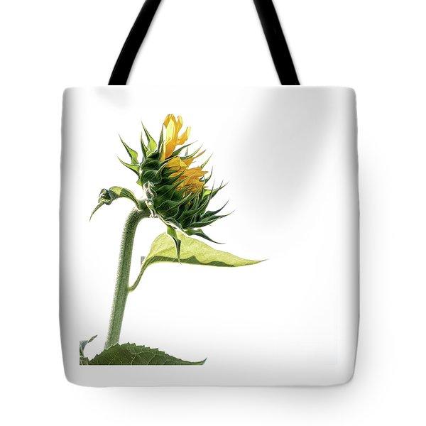 Unfurl - Tote Bag