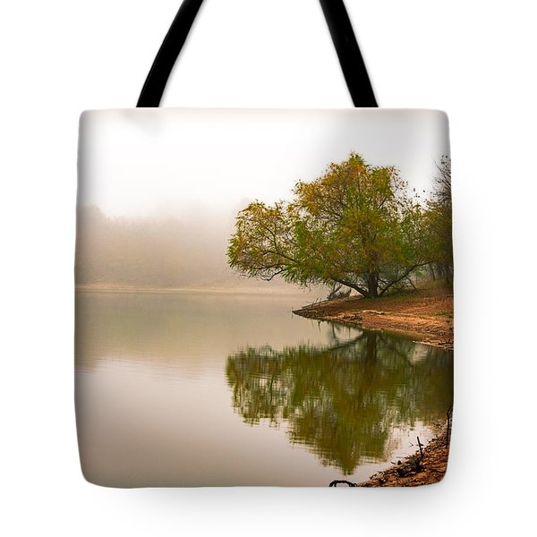 Unger Park Lake At Dawn Tote Bag by Robert FERD Frank