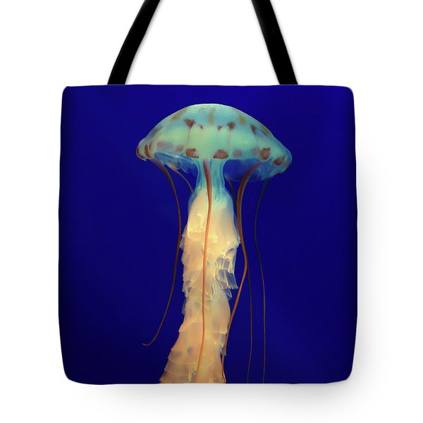 Tote Bag featuring the photograph Unidentified Floating Obejct by T A Davies