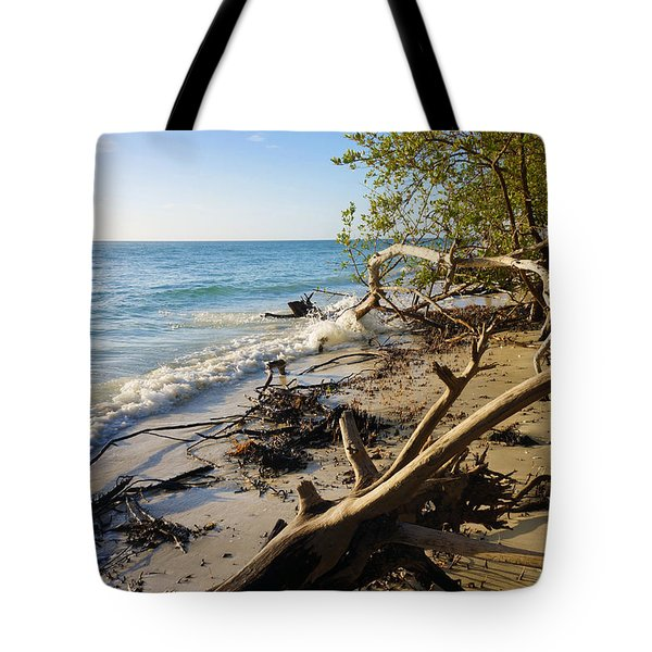 The Unspoiled Beaty Of Barefoot Beach Preserve In Naples, Fl Tote Bag