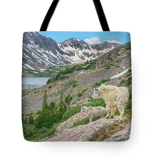 Until One Has Loved An Animal, A Part Of One's Soul Remains Unawakened.  Tote Bag