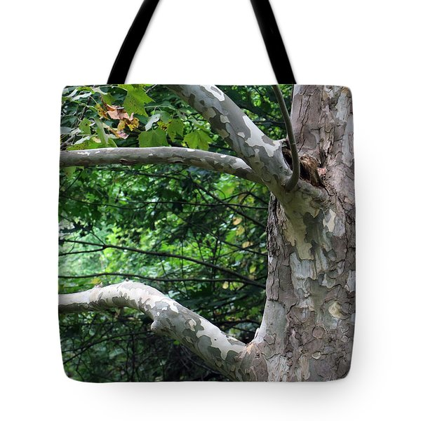 Tote Bag featuring the photograph Untiled by Dorin Adrian Berbier