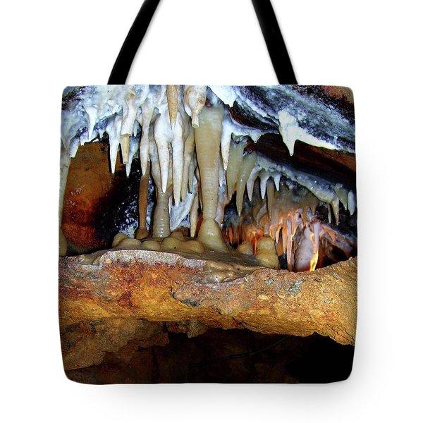 Dragon's Smile Tote Bag