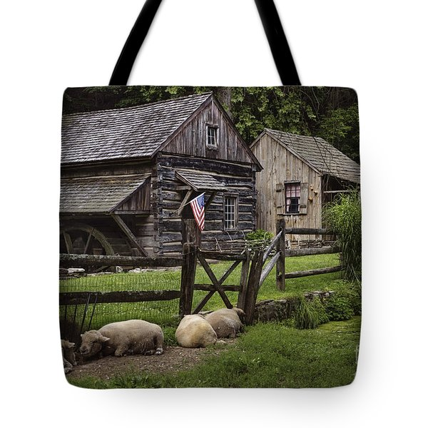 Untitled Cuttalossa Iv Tote Bag