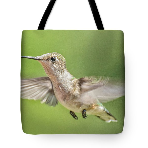 Untitled Hum_bird_three Tote Bag
