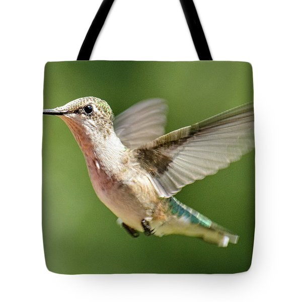 Untitled Hum_bird_two Tote Bag