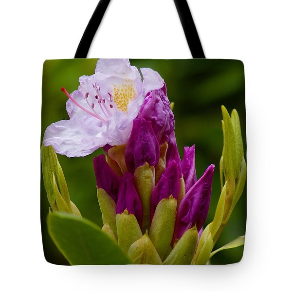 Unveiling Of Inner Self Tote Bag by Ben Upham III