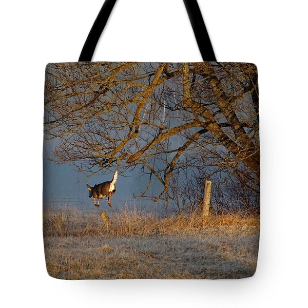 Up And Over Tote Bag