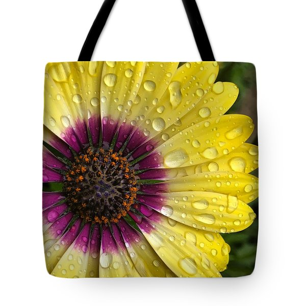 Daisy Up Close  Tote Bag