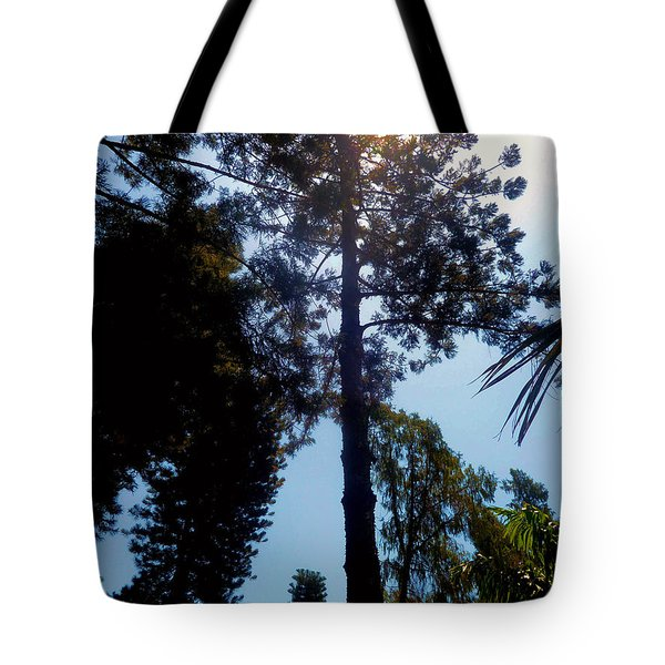 Up In The Sky Trees Tote Bag
