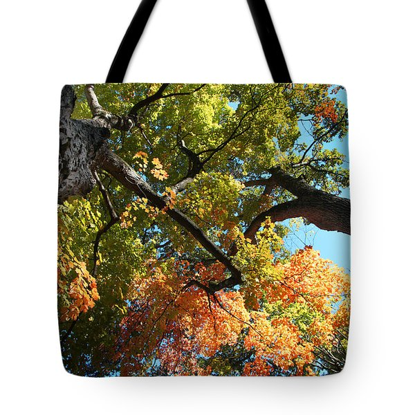 Tote Bag featuring the photograph UP by Joseph G Holland