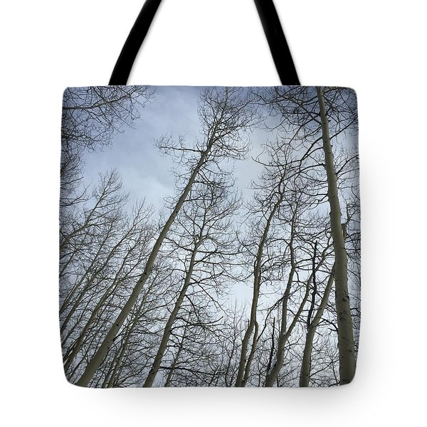 Up Through The Aspens Tote Bag by Christin Brodie