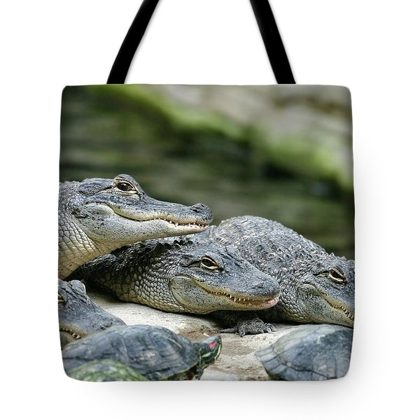 Tote Bag featuring the photograph Up To No Good by Anthony Jones