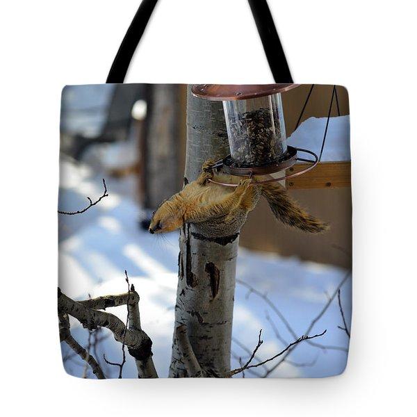 Upisde Down Squirrel Tote Bag