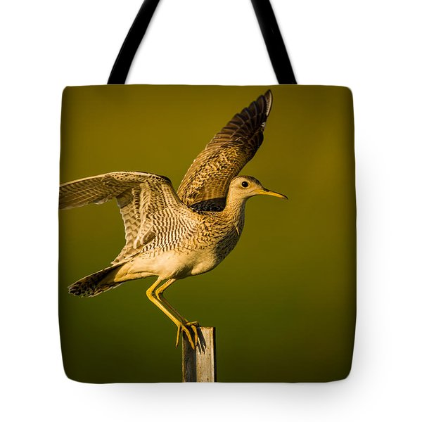 Upland Sandpiper On Steel Post Tote Bag