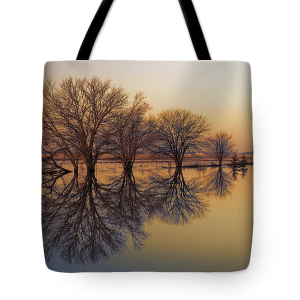 Upon Reflection Tote Bag