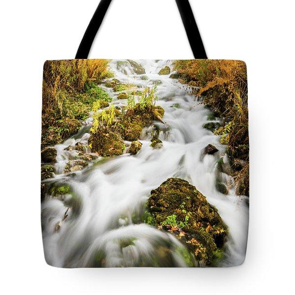Upper Cascades At Cascade Springs Tote Bag