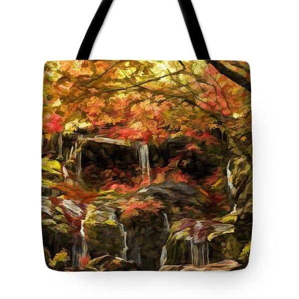 Upper Catawba Falls North Carolina Tote Bag