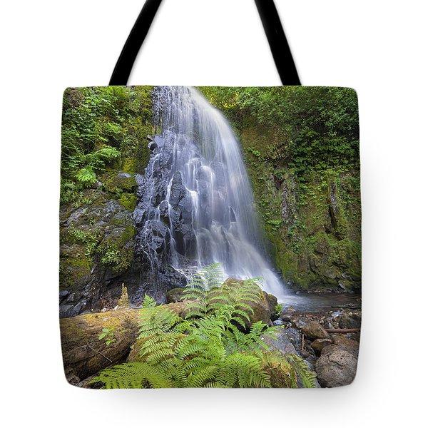 Upper Mccord Creek Falls Tote Bag by David Gn
