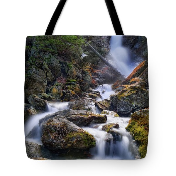 Tote Bag featuring the photograph Upper Race Brook Falls 2017 by Bill Wakeley