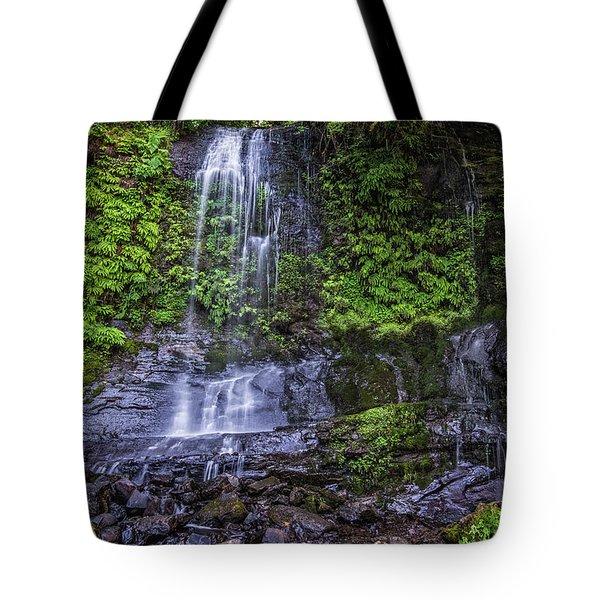 Upper Terrace Falls Tote Bag by Joe Hudspeth