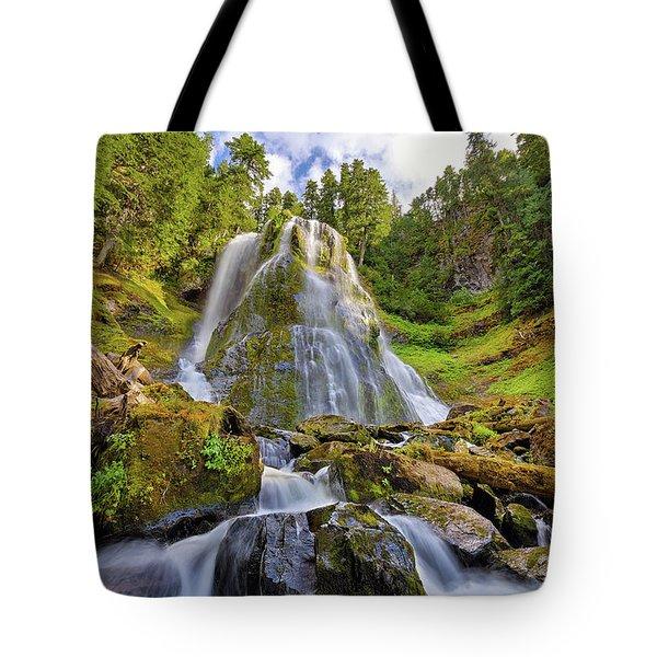 Upper Tier Of Falls Creek Falls In Summer Tote Bag by David Gn
