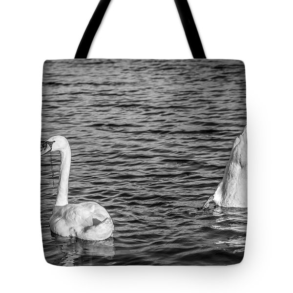 Tote Bag featuring the photograph Ups And Downs by Gary Gillette