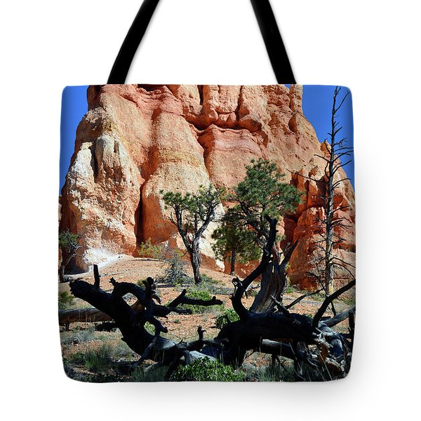 Tote Bag featuring the photograph Upward by Bruce Gourley