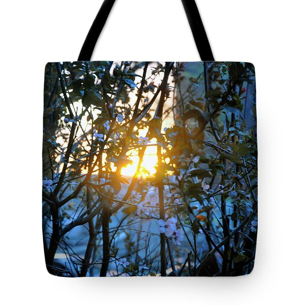 Tote Bag featuring the photograph Urban Sunset by Sarah McKoy