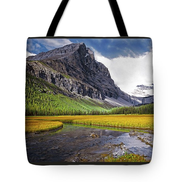 User Friendly Tote Bag