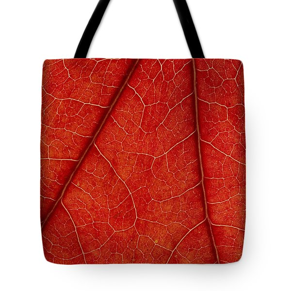 Vains Tote Bag by Chevy Fleet