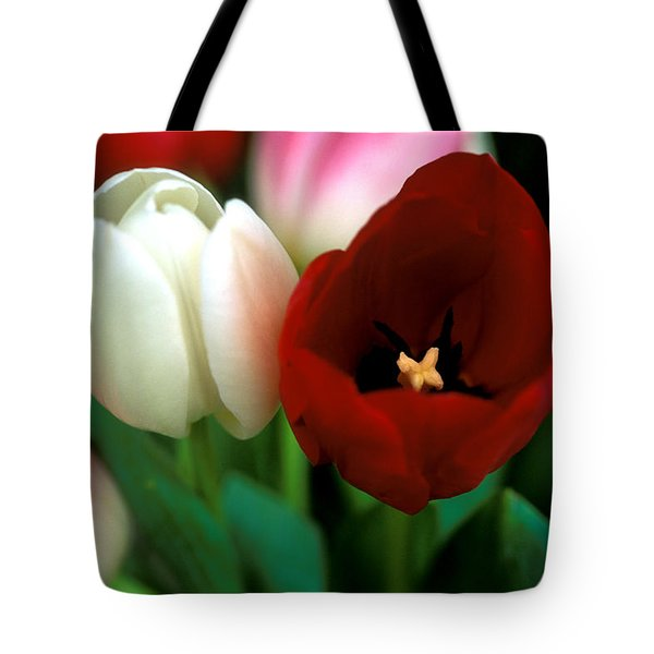 Valentine Tulips Tote Bag by Kathy Yates