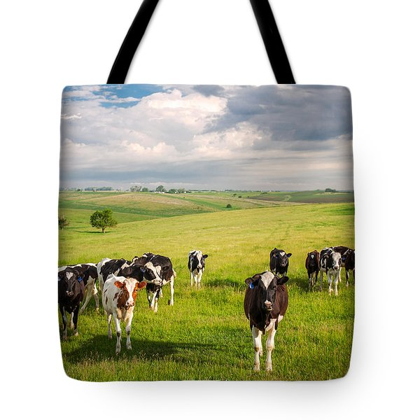 Valley Of The Cows Tote Bag