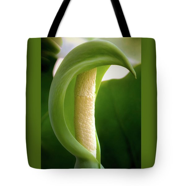 Canopy Of Peace Tote Bag
