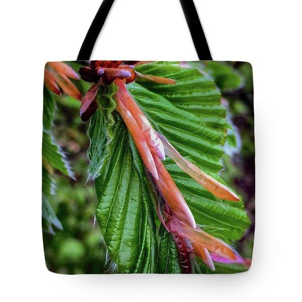 Beech  Tote Bag
