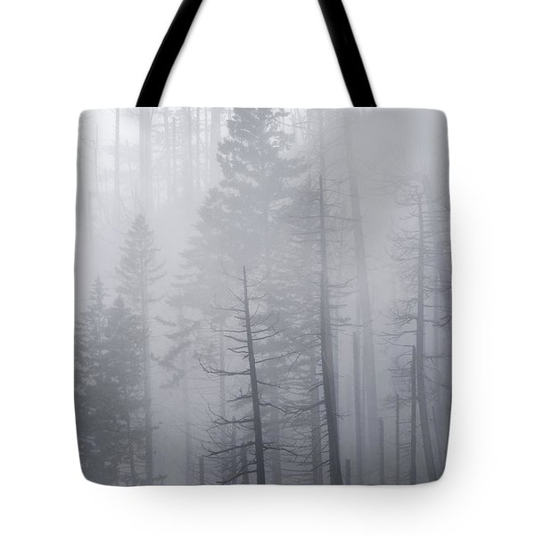 Tote Bag featuring the photograph Veiled In Mist by Dustin LeFevre