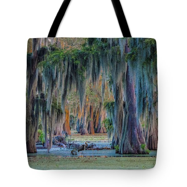Unveiling The Secrets Of Da Swamp At Cypress Island Preserve Tote Bag