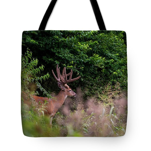 Velvet Crown Tote Bag
