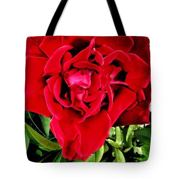 Velvet Red Rose Tote Bag