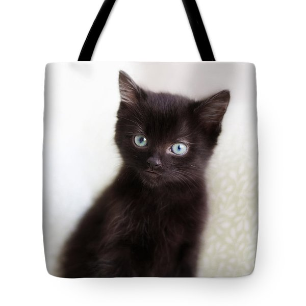Tote Bag featuring the photograph Velvet - Square Version by Amy Tyler