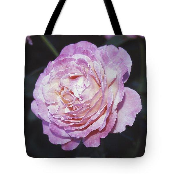 Velvia Rose Tote Bag
