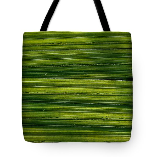 Venetian Blinds Tote Bag