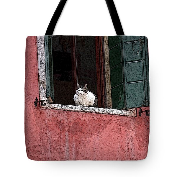 Venetian Cat In Window Tote Bag