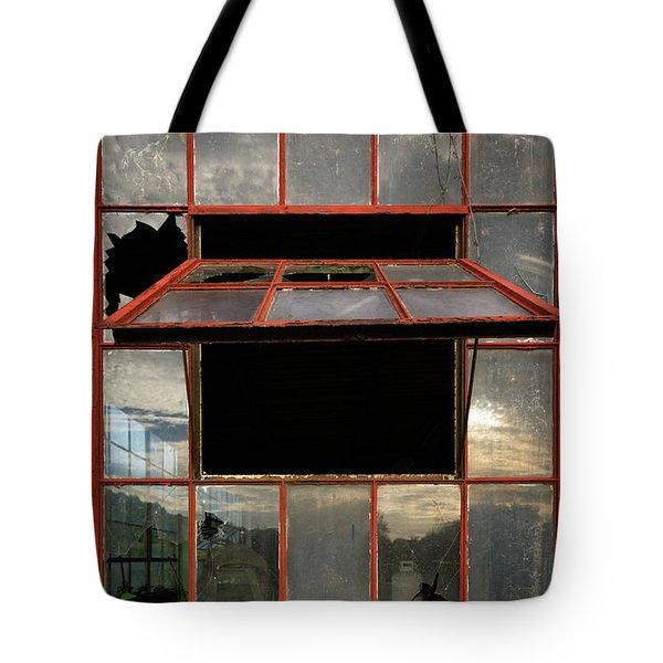 Ventanas Tote Bag