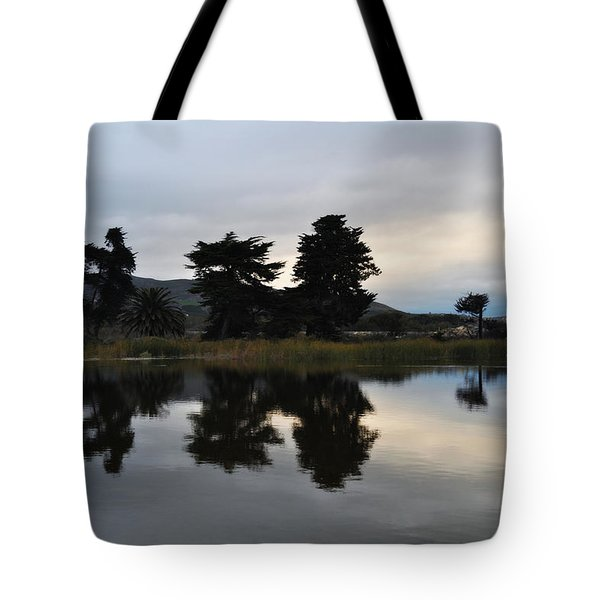 Tote Bag featuring the photograph Ventura California Coast Estuary by Kyle Hanson