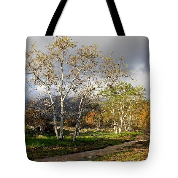 Ventura River Preserve Winter 2017 Tote Bag